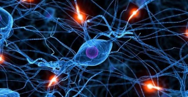 Le cellule hanno speciali proprietà vibrazionali? Questa ricerca potrebbe spiegare come i microtubuli creano comunicazione quantistica tra le cellule